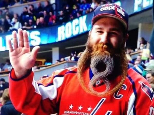 ovi-beard