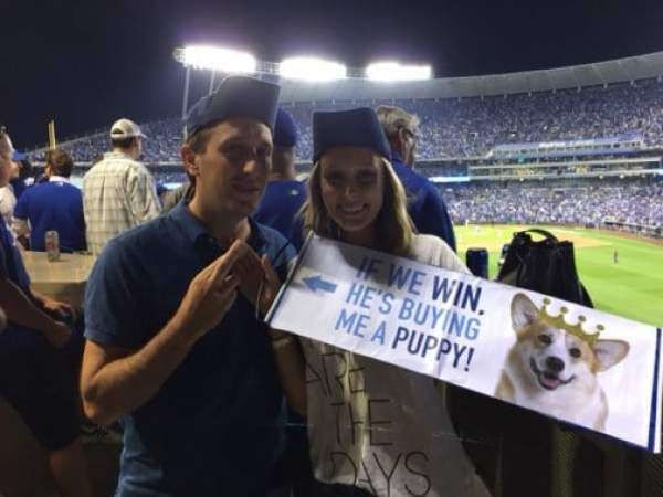 royals-fans-puppy