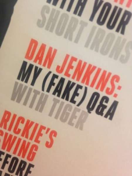 fake-tiger-interview