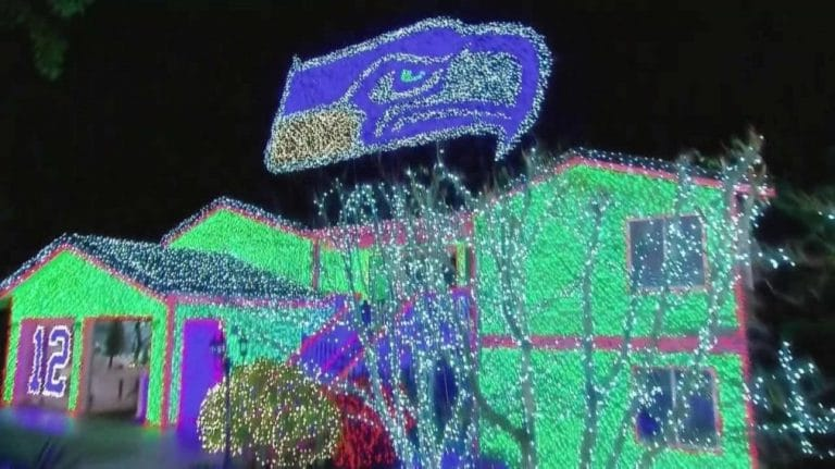 Christmas Light Seahawks Logo