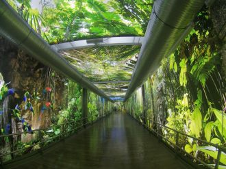 tropical-islands-amazonia-aussenbereich-dschungel-tunnel-eingang