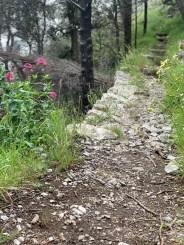 laufen-almalfi-trails-trailrunning-Pfad-der-Goetter-2