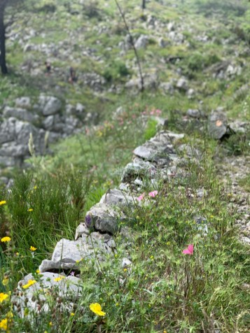 laufen-almalfi-trails-trailrunning-Pfad-der-Goetter-4