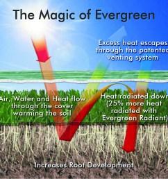 diagram of an evergreen [ 1131 x 1128 Pixel ]