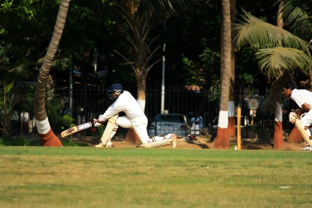 playing cricket surrounded by palm trees
