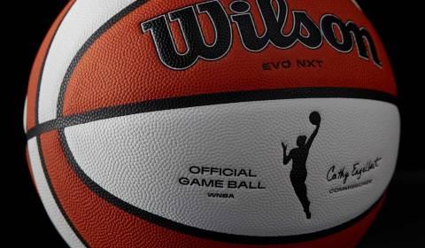 Wilson WNBA Basketball