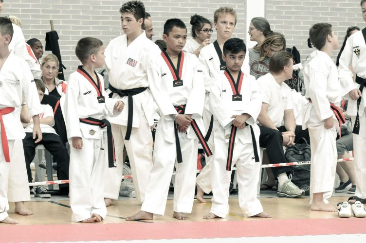 Martial-Arts-WC-2015-1071