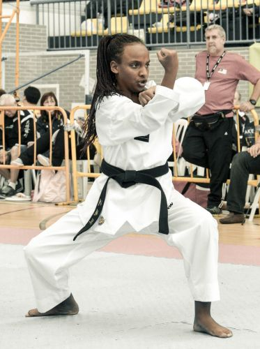 Martial-Arts-WC-2015-1183