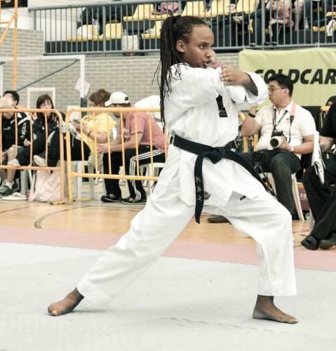 Martial-Arts-WC-2015-1186