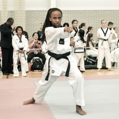 Martial-Arts-WC-2015-1193