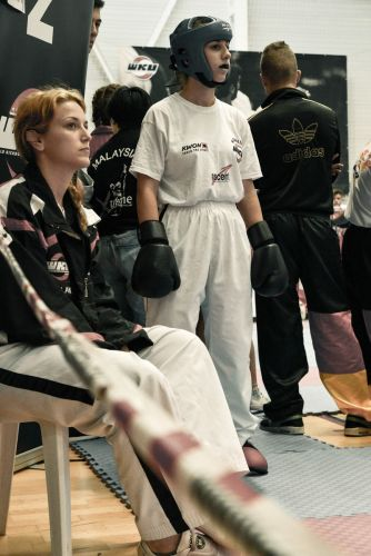 Martial-Arts-WC-2015-1249