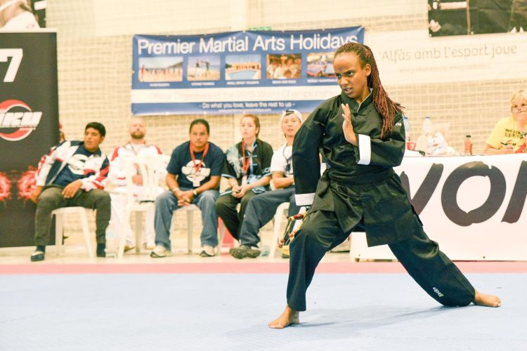 Martial-Arts-WC-2015-1464