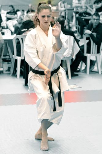 Martial-Arts-WC-2015-1505