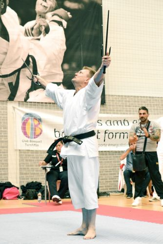Martial-Arts-WC-2015-1651