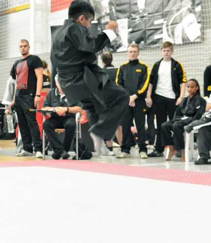 Martial-Arts-WC-2015-837