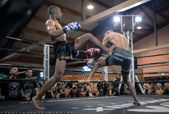 Phoenix fight night sportschule alex2017-3646