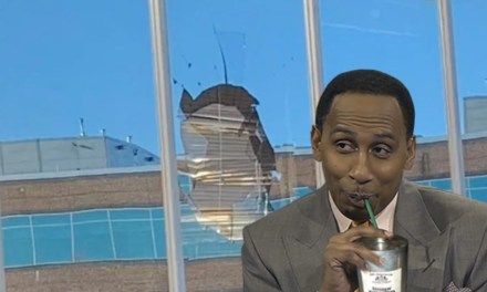 A Turkey Vulture Smashed Stephen A. Smith's Office Window