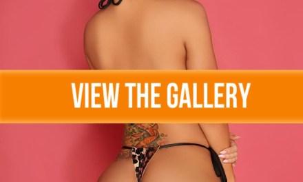 Claudia Sampredo Gallery
