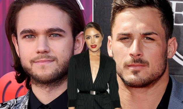 DJ Zedd Takes a Shot At Danny Amendola After He's Spotted with Mystery Girl at Beach