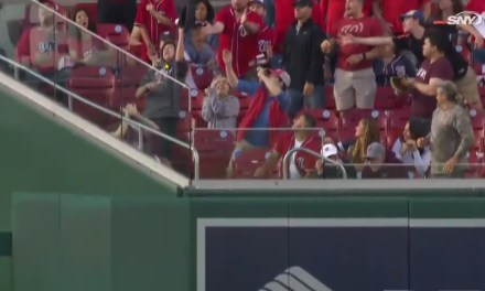 Nationals Fan With a Glove Took a Home Run Off the Head
