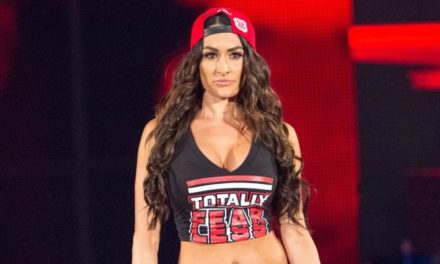 Alleged Topless Selfie of WWE Diva Nikki Bella Leaked