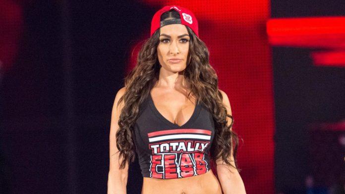 Alleged Topless Selfie of WWE Diva Nikki Bella Leaked