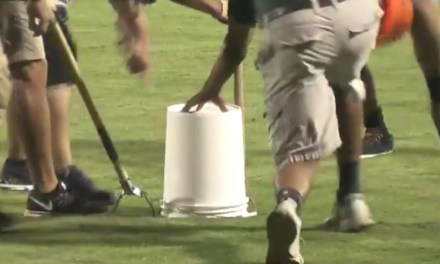 Watch a Minor League Baseball Team's Grounds Ccrew Struggle to Remove a Snake from the Field