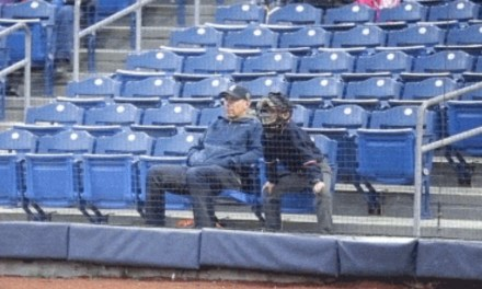 Kid Shows Up to a Minor League Baseball Game Dressed as an Umpire, Calls Game from the Stands