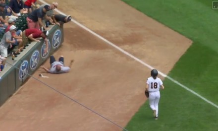Twins Fan Falls Out of the Stands Trying to Get a Foul Ball