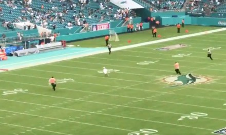 A Kid Ran onto the Field During the Dolphins Titans Delay