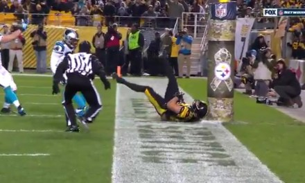 This Vance McDonald TD Catch Will Have You Thoroughly Confused about What a Catch is