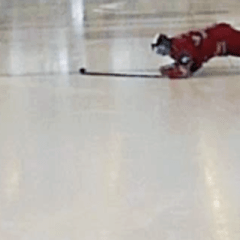I try ice hockey… turns out being able to skate helps