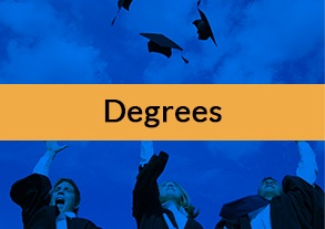 Degree in management