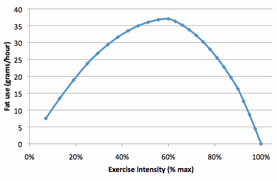 Fat-use-over-different-intensities