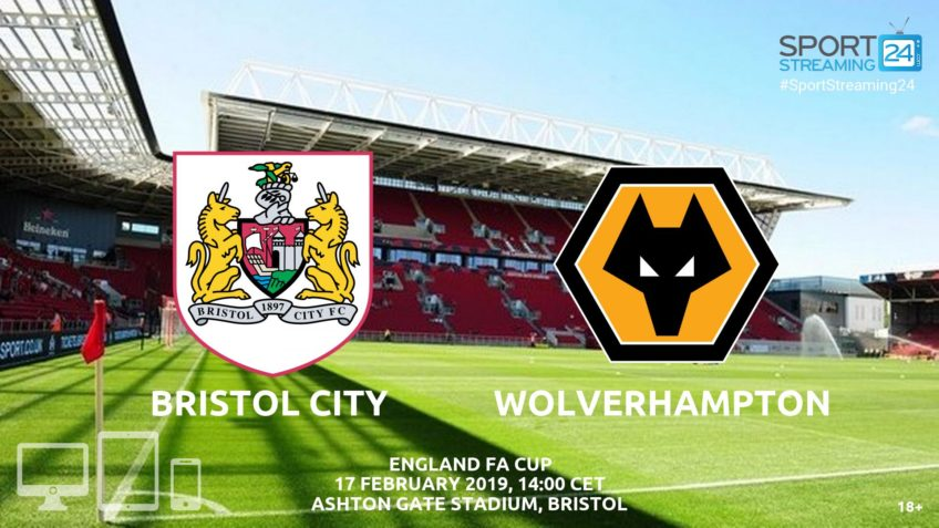 bristol city wolves live stream video