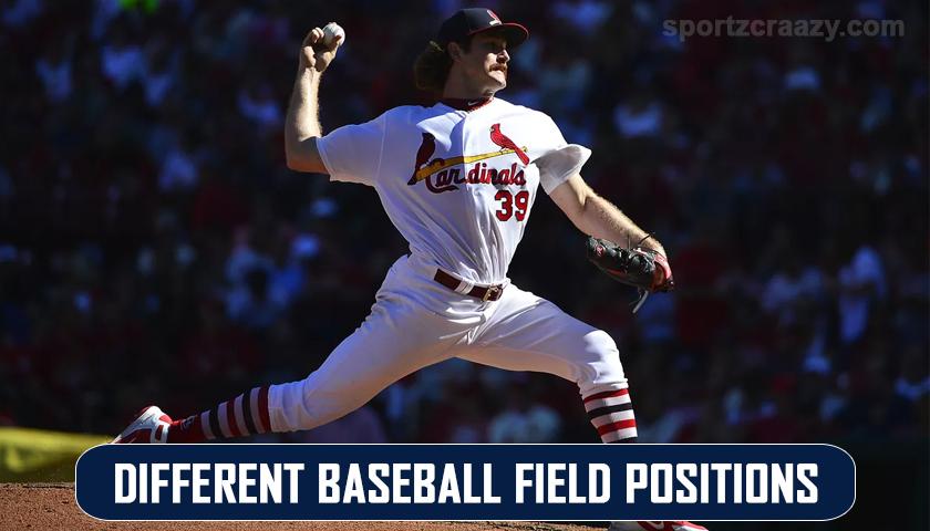 Baseball Field Positions