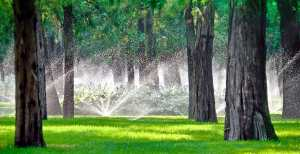 4 Common Irrigation Mistakes