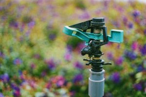 Designing Smart Irrigation Systems for Delaware Properties