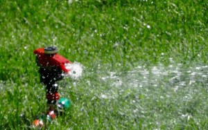 Types of Sprinkler Heads for Underground Irrigation Systems