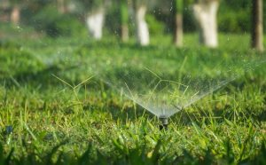 Boost Summer Irrigation Efficiency with Residential Irrigation Maintenance