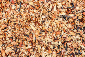 Why You Need to Mulch in the Summer