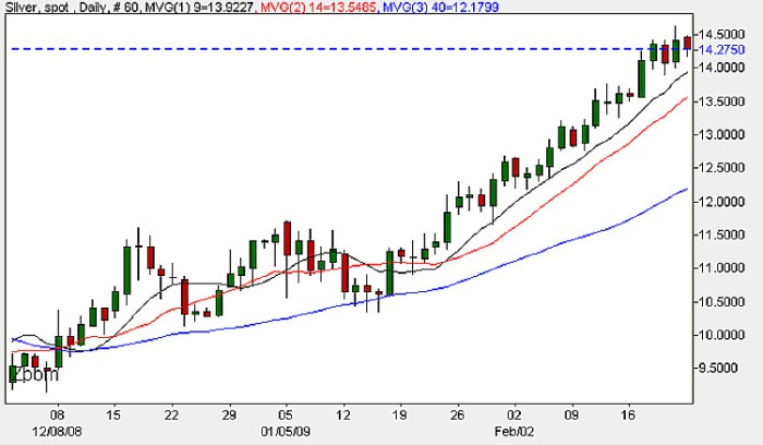 Spot Silver Prices - 23rd February 2009 Daily Candle Chart