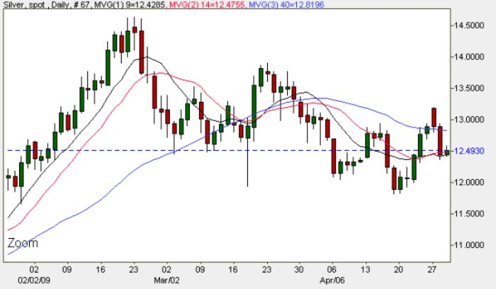 Spot Silver Prices - Daily Silver Chart 29th April 2009