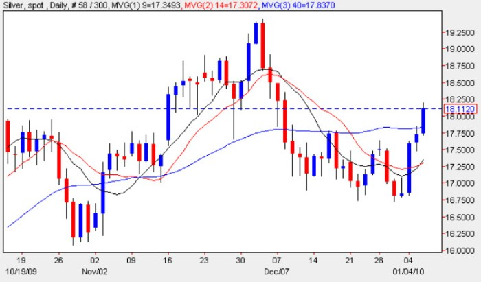 Silver Spot Price - Daily Silver Chart 5th January 2010