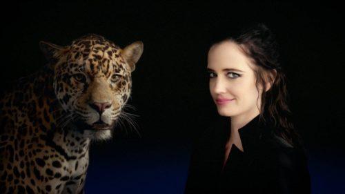 Eva Green_spot Jaguar _A breed apart