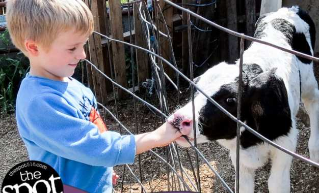 SPOTTED: Family Farm Day at Stanton Farms