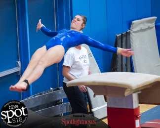 gymnastics-5034