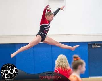 gymnastics-5542