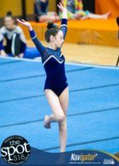 gymnastics-6056