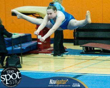 gymnastics-7684